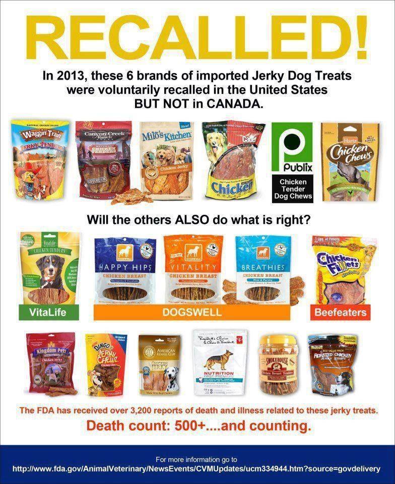 Best Dye Free Dog Food