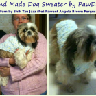 Shih Tzu Jazz wearing her new Sweater made by PawDogs