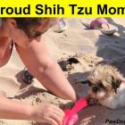 Proud Shih Tzu Mom!