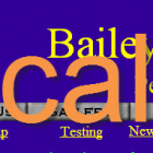 Recall: Bailey's Choice Pet Treats