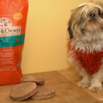 Vasco with Stella & Chewy's frozen Raw Food.